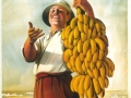 027-banana-somala