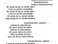 060-guanta-namera